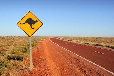 kangaroo-traffic-sign-260nw-214578130.jpg